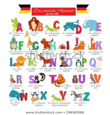 ábécé rajzolt állatok szett rajz illusztráció oktatási Stock fotó © izakowski