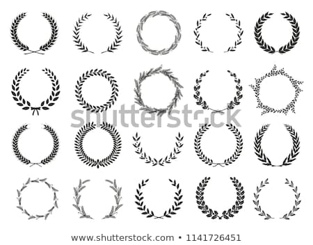 Floral circular ornaments first set Stock photo © Imaagio