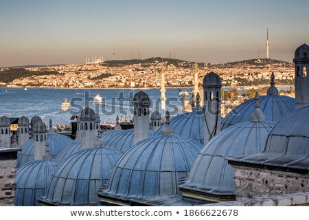 top view of istanbul and the roof of the suleymaniye mosque stock photo © boggy