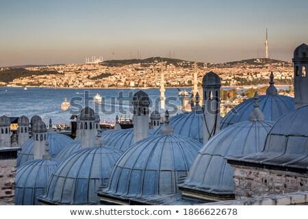 Top мнение Стамбуле крыши мечети Турция Сток-фото © boggy