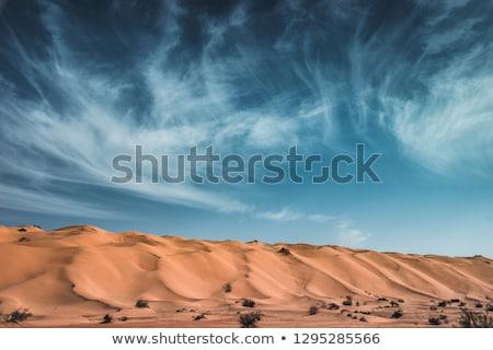 ビッグ 砂丘 赤 黄色 草 公園 ストックフォト © mdfiles