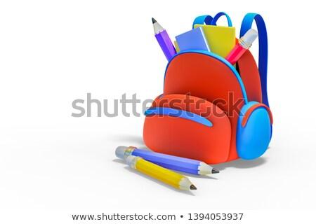 Large set of school items on white background Stock photo © bluering