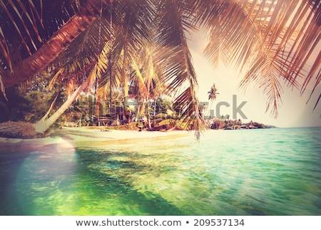 木製 · チェア · 日没 · ビーチ · 2 · リラックス - ストックフォト © ldambies