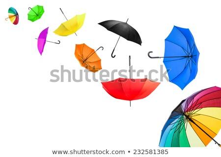 esernyők · illusztráció · terv · háttér · eső · vektor - stock fotó © nurrka