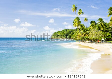 Mount Irvine Bay, Tobago Stock photo © phbcz