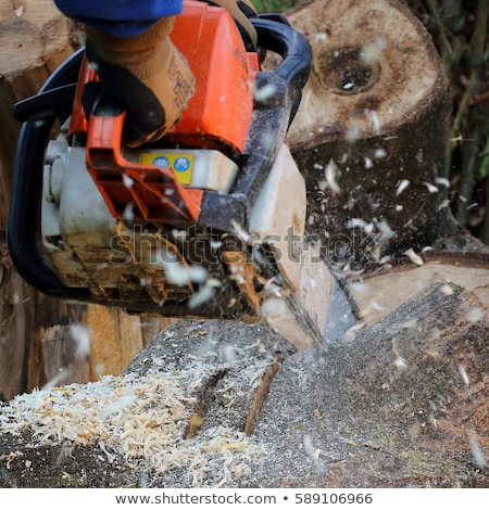 Man cutting piece of wood with chain saw. Stock photo © Massonforstock