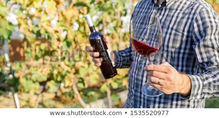 owner tasting his wine stock photo © photography33