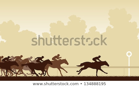 brown race horses Stock photo © prill