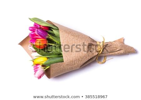 Bouquet tulipani verde vaso isolato bianco Foto d'archivio © ultrapro