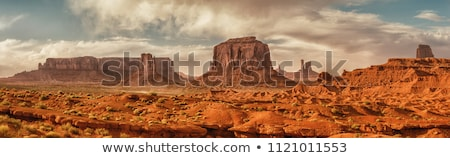 panoramic view of monument valley at sunrise stock photo © vwalakte
