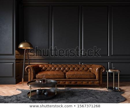 Сток-фото: кожа · диване · современных · гостиной · белый · домой