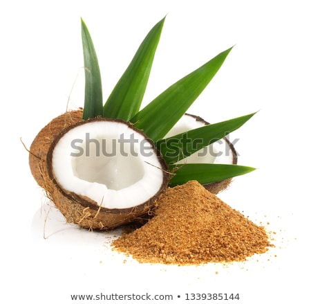 coconut bud Stock photo © antonihalim