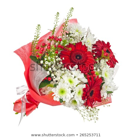 red gladiolus in colorful vase isolated on white stock photo © tetkoren