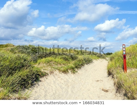 Façon île Danemark plage eau paysage Photo stock © meinzahn