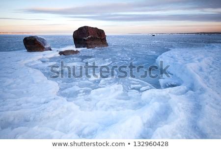 Imagem mar báltico primavera tempo costa tarde Foto stock © fotoaloja
