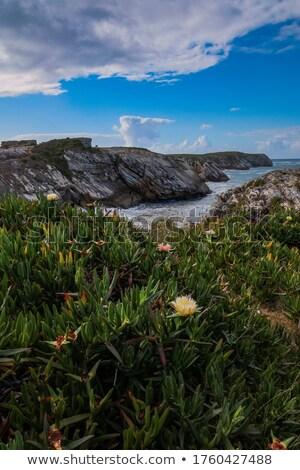 Portugália tengerpart part népszerű uticél western Stock fotó © jeayesy