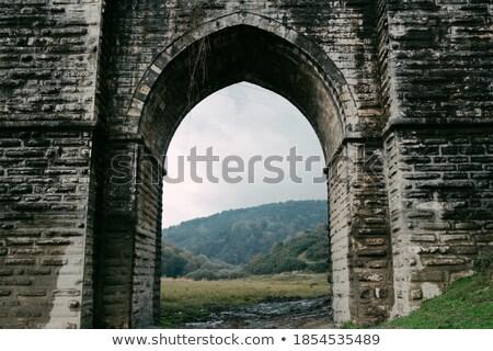 石の壁 古い 森林 水 壁 ストックフォト © Discovod