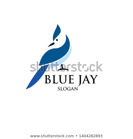 Blue jay In Hand Stock photo © brm1949