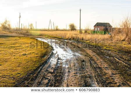 dirty rural road in countryside stock photo © ozaiachin