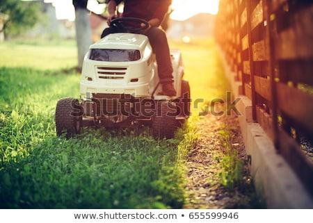 Detail of a riding lawn-mower Stock photo © olandsfokus