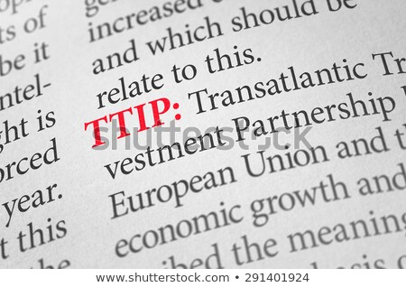 Definition of the word TTIP in a dictionary Stock photo © Zerbor