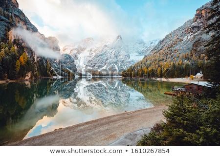 Fane Alp  Stock photo © LianeM