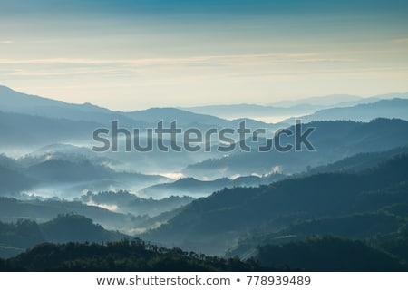Morning twilight in the mountains Stock photo © Kotenko