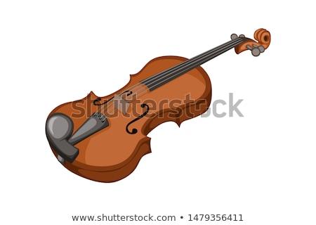 Vector of violin. Stock photo © Morphart
