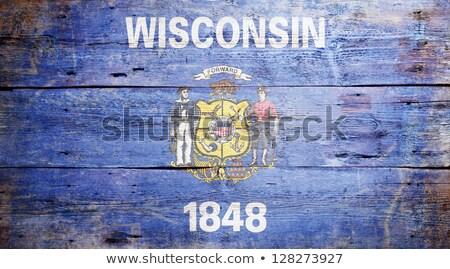 Wisconsin bandeira grunge madeira pintado Foto stock © NiroDesign