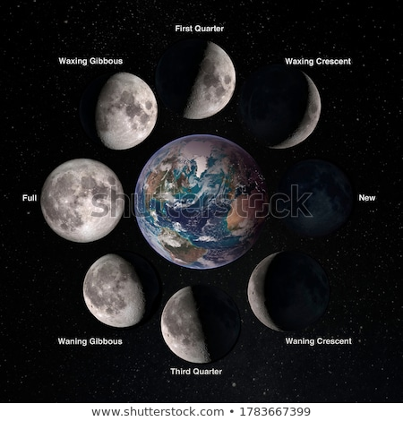 Phases of the Earth's Moon Stock photo © bluering