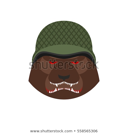 Stock photo: Angry Bear In Military Helmet Aggressive Grizzly Head Wild Ani