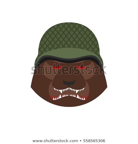 boos · hoofd · illustratie - stockfoto © popaukropa