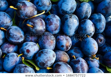 A bunch of Plums Stock photo © user_11224430