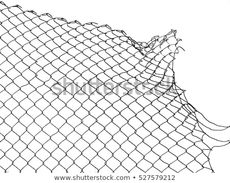Chain link fence as grunge background Stock photo © stevanovicigor