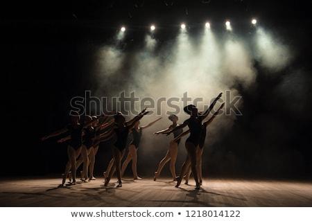 Ballerine ballet danse stade théâtre Photo stock © wavebreak_media