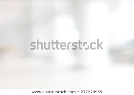 Bulanıklık soyut görüntü güneş arka plan yeşil Stok fotoğraf © serg64