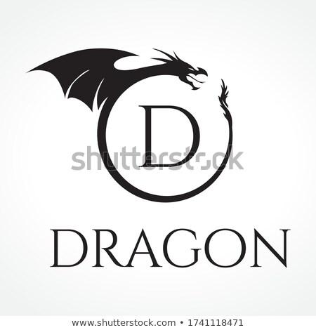 dragón · dibujo · blanco · negro · boceto · estilo · ilustración - foto stock © krisdog