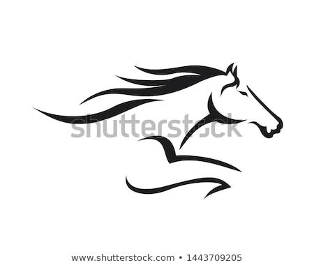 Vector ejecutando caballo negro icono silueta Foto stock © NikoDzhi