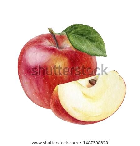 Vízfesték illusztráció fél piros alma festék csobbanások Stock fotó © Sonya_illustrations