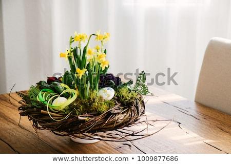 Pâques portrait œuf de Pâques soins bonheur permanent Photo stock © IS2