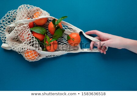 Táska mandarin illusztráció természet egészség háttér Stock fotó © bluering