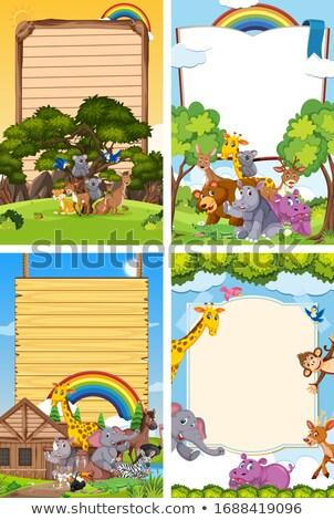Patru frontieră sabloane drăguţ cangur ilustrare Imagine de stoc © colematt