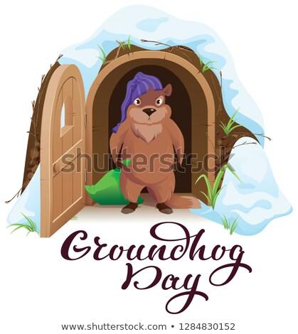 Groundhog day. An angry woodchuck left house and open door Stock photo © orensila