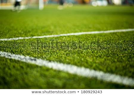 Close-up of artificial turf of soccer pitch. Soccer football fie Stock photo © matimix