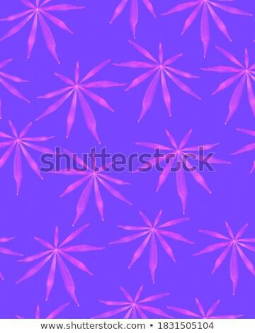Férias padrão feito à mão pétalas verde trevo Foto stock © artjazz