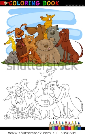 Cartoon poedel hond karakter kleurboek pagina Stockfoto © izakowski