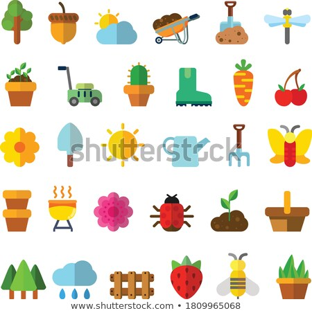 Spring and gardening. Color icon set. Filled vector illustration Stock photo © Imaagio