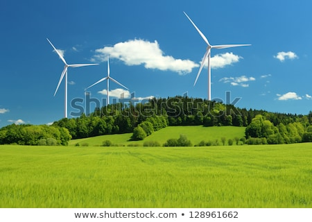 Wind turbines in a green corn field  Stock photo © elxeneize