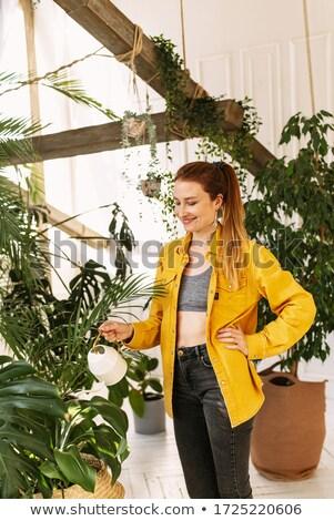 Fiatal nő locsol cserepes növény üzlet nő lány Stock fotó © photography33