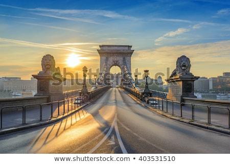 Széchenyi chain bridge in Budapest, Hungary Stock photo © AndreyKr